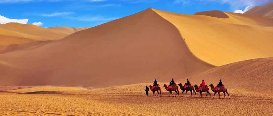 重庆到沙漠旅游团归来告诉你不虚此行,重庆到腾格里沙漠旅游