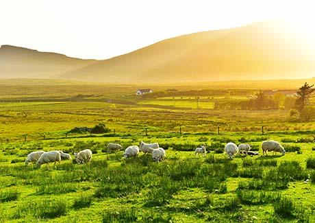 ♠重庆出发,重庆到英国旅游、爱尔兰11天旅游