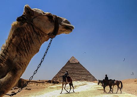 ♬重庆到埃及出发,成都出发-埃及阿联酋10天旅游