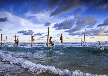 ★【印度洋之泪】重庆到斯里兰卡旅游,重庆直飞斯里兰卡浪漫(8日游)线路!