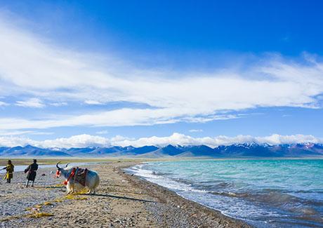★重庆到西藏旅游,[纯玩]拉萨+日喀则单卧单飞7天旅游!