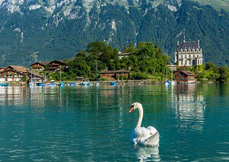 ★重庆去欧洲旅游,德国+瑞士+奥地利3国自驾12天旅游!