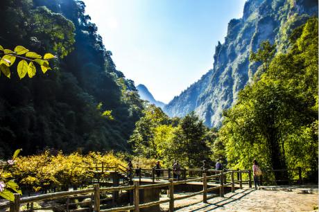 ☂重庆周边游,重庆万盛黑山谷+神龙峡峡谷汽车两日旅游[重庆周边二日游]