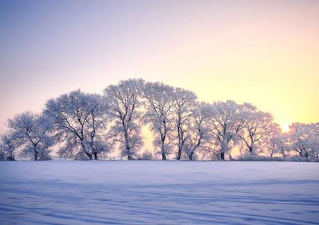 ☂重庆到东北旅游,冬季重庆到东北亚布力滑雪品质4日双飞旅游<2017新春滑雪游>!
