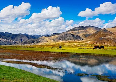 ♥重庆到西藏旅游,西藏拉萨、纳木错去卧回飞6日旅游报价(藏地品质)